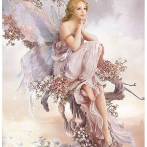 Furn-Fairy Beauty A4